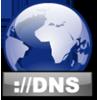 DNS Record Lookup